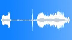 WaspQueeninfli88056 Sound Effect