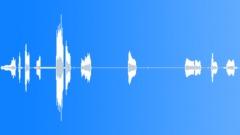DragonflySpCU95218 Sound Effect