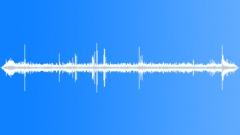 WedgeCappedCapuc29022 - sound effect