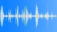 WedgeCappedCapuc29026 - sound effect