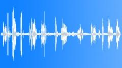 BuffyHeadedMarmo36098 Sound Effect