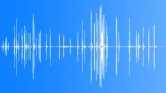 BuffyHeadedMarmo36095 Sound Effect