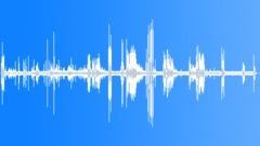BuffyHeadedMarmo36099 Sound Effect