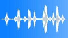 Stock Sound Effects of AlligatorAdultr3194
