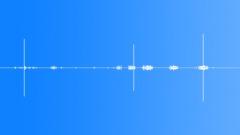 ColoradoChipmunk95129 - sound effect