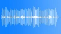 SmithSBushSquir21114 - sound effect