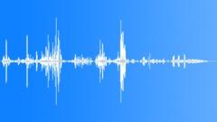 AntarcticFurSeal5081 - sound effect