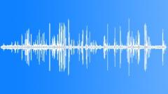 AntarcticFurSeal71138 - sound effect
