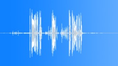WhooperSwanTrum25059 - sound effect