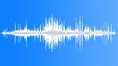 WhooperSwanAwar25056 - sound effect
