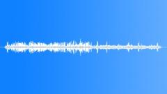 UnidentifiedBird58038 Sound Effect