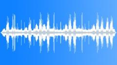 UnidentifiedBird56180 Sound Effect
