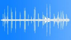 UnidentifiedBird56095 Sound Effect