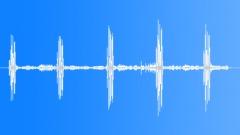 UnidentifiedBird51087 Sound Effect