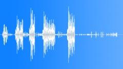 UnidentifiedBird50147 Sound Effect