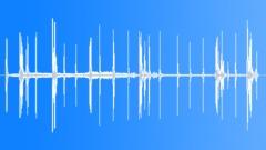 ToothBilledCatbi46053 Sound Effect