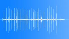 SindJungleSparro60027 - sound effect