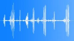 ScottishCrossbill51006 - sound effect