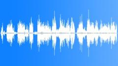 SageThrasherAnd55096 - sound effect