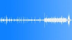 SageGrouseMCUd54162 Sound Effect