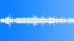 SageGrouseMCUC54163 Sound Effect