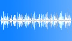 SageGrouseGroup20200 Sound Effect
