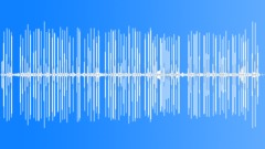 EuropeanNuthatch34055 - sound effect