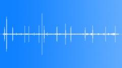 CrestedDrongoMC62102 Sound Effect