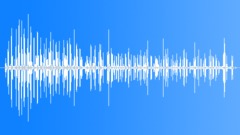 CrestedDrongoCU62096 Sound Effect