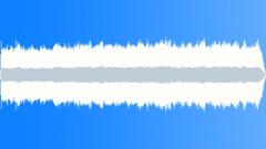 CrestedAukletMP36010 - sound effect