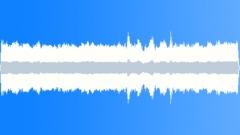 CrestedAukletMC40097 - sound effect