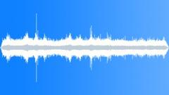 CrestedAukletMC40095 - sound effect