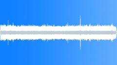 CrestedAukletMC36068 - sound effect