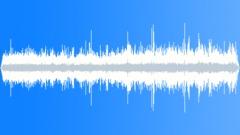 CrestedAukletMC36064 - sound effect