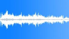 CrestedAukletCU36069 - sound effect