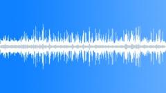 CrestedAukletCU36009 Sound Effect