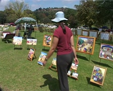 Art Under the Sun, Zoo Lake Joburg GFSD Stock Footage