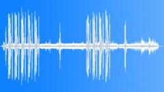 CollaredTurtleDo77196 Sound Effect