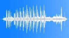 CollaredTurtleDo77195 Sound Effect