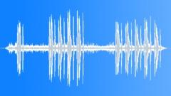 CollaredTurtleDo77193 Sound Effect