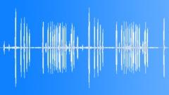 CitronCrestedCoc88105 - sound effect