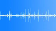 BrownThrasherMC63004 - sound effect