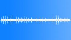 BrownThrasherMC63001 - sound effect
