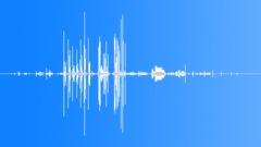 BaldEagleMCUca62282 Sound Effect