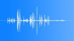 BaldEagleMCcal64198 Sound Effect