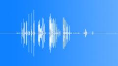 BaldEagleMCcal64196 Sound Effect
