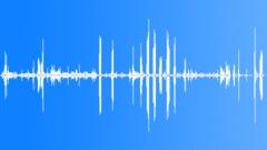 BaldEagleCUcal64248 Sound Effect