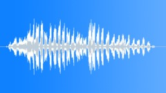 BaldEagleCUcal64246 Sound Effect
