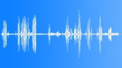 BaldEagleCUcal64242 Sound Effect