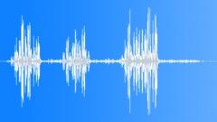 AfricanHillBabbl15161 - sound effect